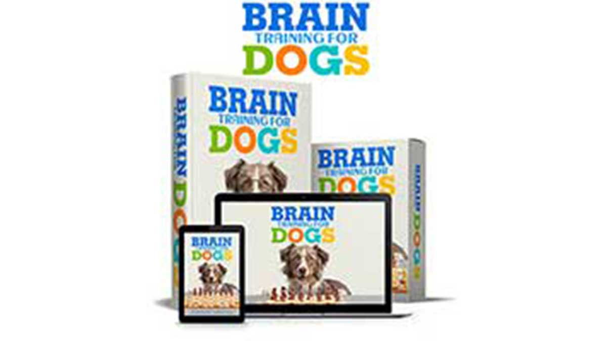 Brain Training For Dogs Review: Abuse & Cruelty To Train …