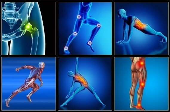 Unlock Your Hip Flexors 3 Unlock Your Hip Flexors Review