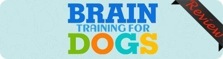 Brain Training for Dogs Review – Online dog training courses, PeakToBest