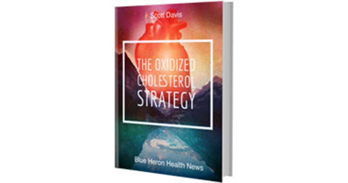 The Oxidized Cholesterol Strategy Review – Facts You Must Know!