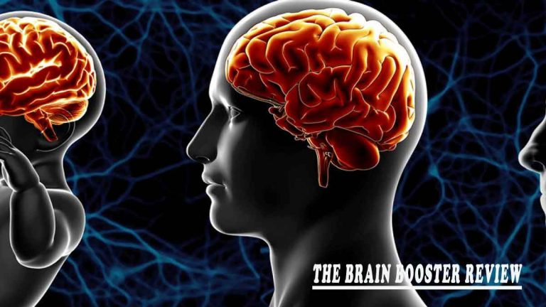 The Brain Booster